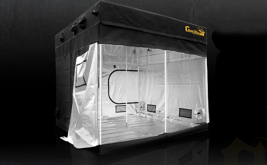 grows tent
