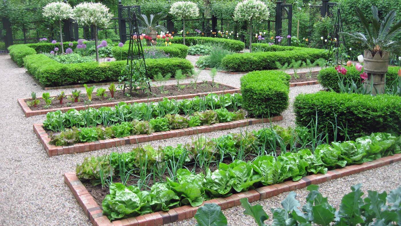 flower and vegetable garden layout