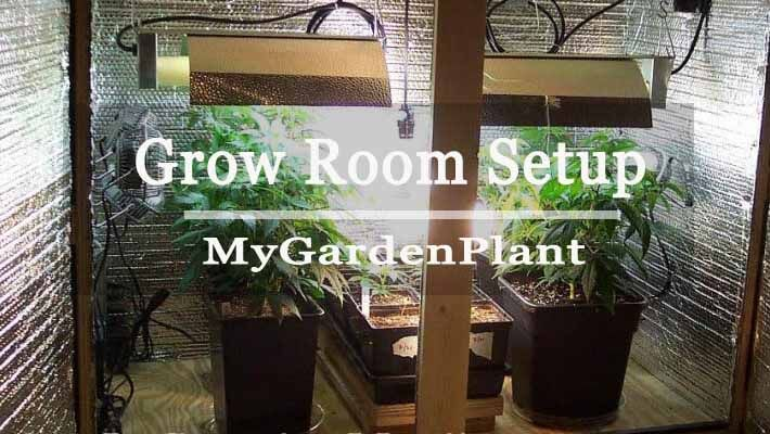 A Grow Room Setup Step By Step Guide MyGardenPlant