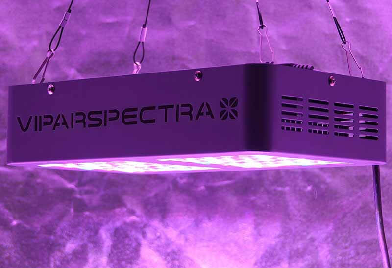 VIPARSPECTRA Reflector-Series LED Grow Light review