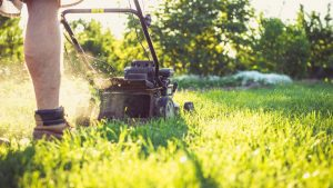 Gardening Lawn Care Tips