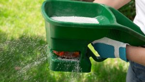 Lawn Care Tips For Beginners