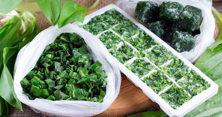 Can You Freeze Fresh Herbs