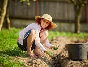 When is the right time to plant a potato